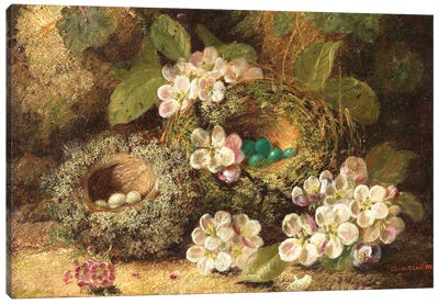 Primroses and Bird's Nests on a Mossy Bank, 1882  Canvas Art Print