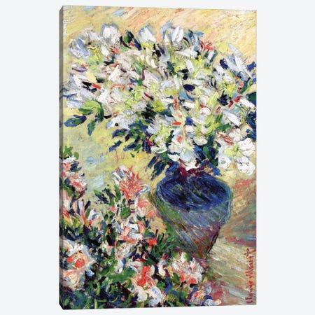Azaleas, 1885  Canvas Print #BMN3853} by Claude Monet Canvas Wall Art
