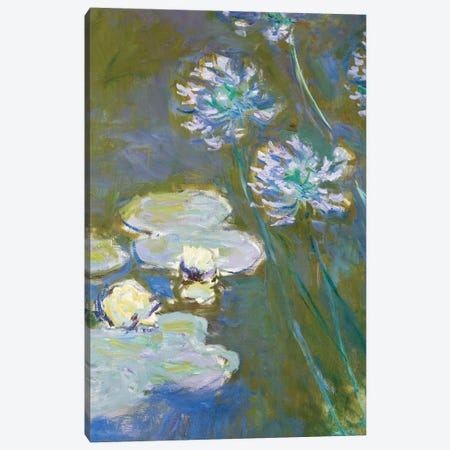 Waterlilies and Agapanthus, 1914-17  Canvas Print #BMN3859} by Claude Monet Canvas Art