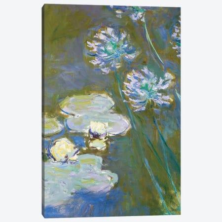 Waterlilies and Agapanthus, 1914-17  Canvas Print #BMN3859} by Claude Monet Canvas Art