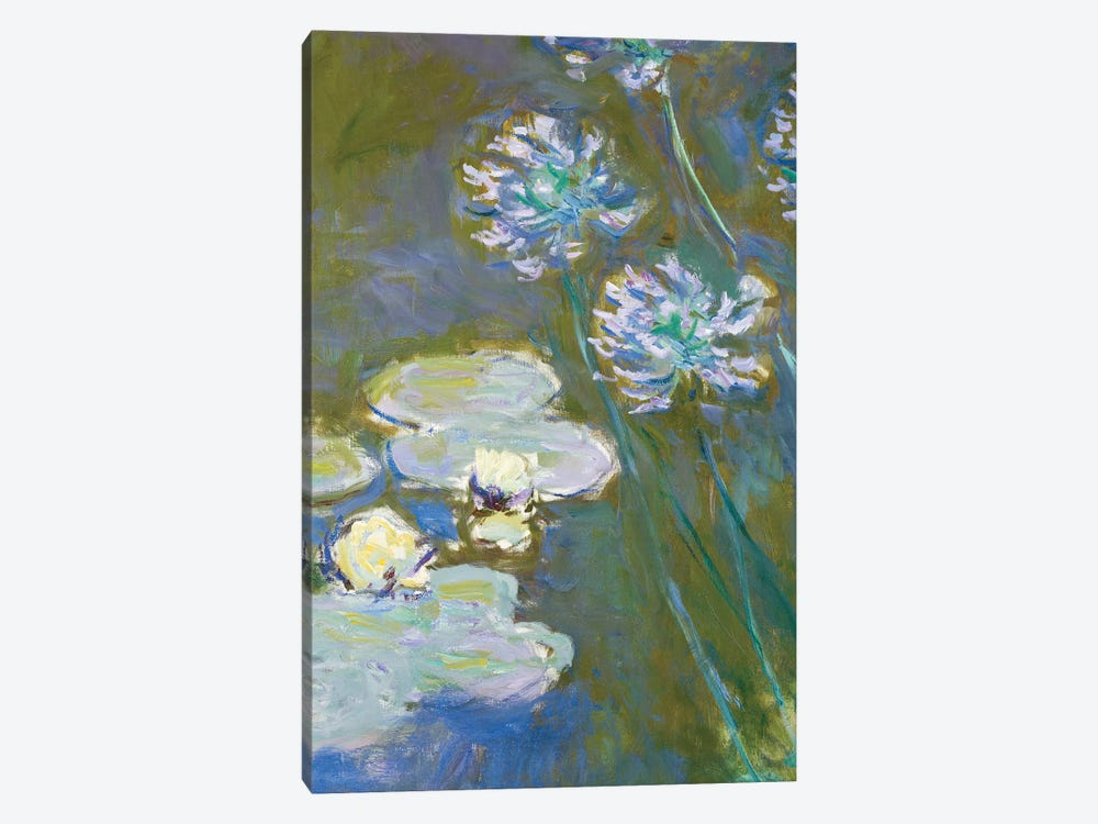 Waterlilies and Agapanthus, 1914-17  by Claude Monet 1-piece Canvas Wall Art