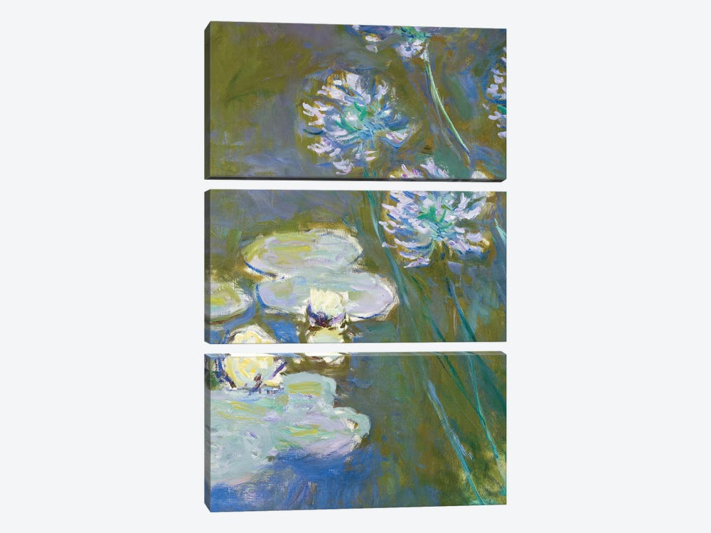 Waterlilies and Agapanthus, 1914-17  by Claude Monet 3-piece Canvas Art