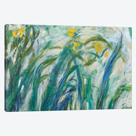 Yellow and Purple Irises, 1924-25  Canvas Print #BMN3866} by Claude Monet Canvas Art