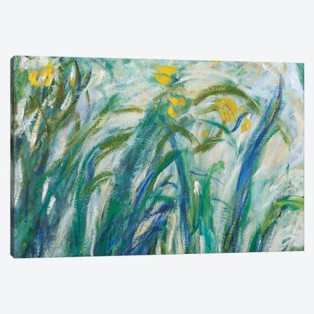 Yellow and Purple Irises, 1924-25  Canvas Print #BMN3866} by Claude Monet Canvas Art