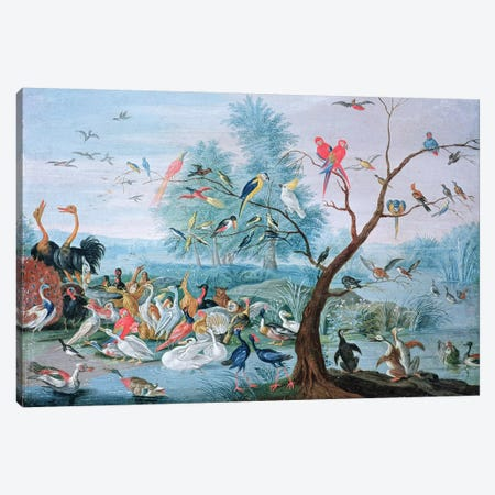 Tropical birds in a landscape  Canvas Print #BMN393} by Jan van Kessel Canvas Wall Art
