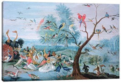 Tropical birds in a landscape  Canvas Art Print