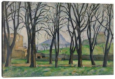 Chestnut Trees at Jas de Bouffan, c.1885-86  Canvas Art Print