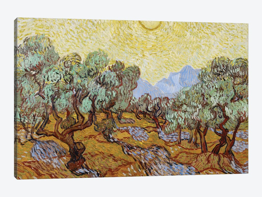 Olive Trees, 1889  by Vincent van Gogh 1-piece Canvas Art