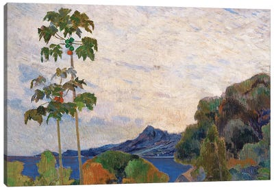Martinique Landscape, 1887   Canvas Art Print