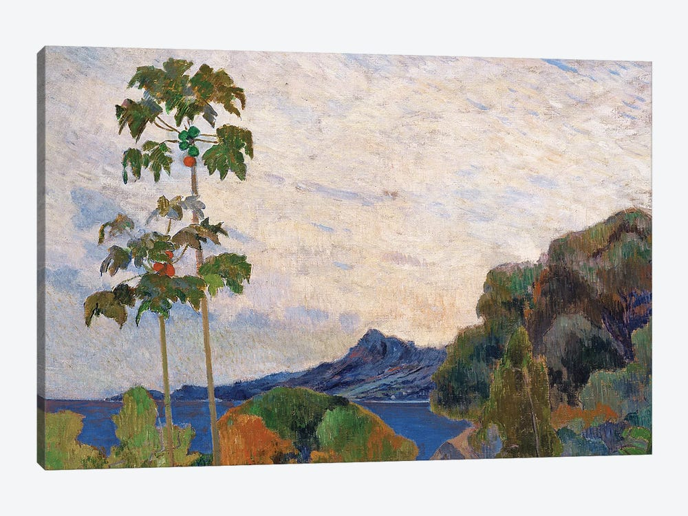 Martinique Landscape, 1887   by Paul Gauguin 1-piece Canvas Print