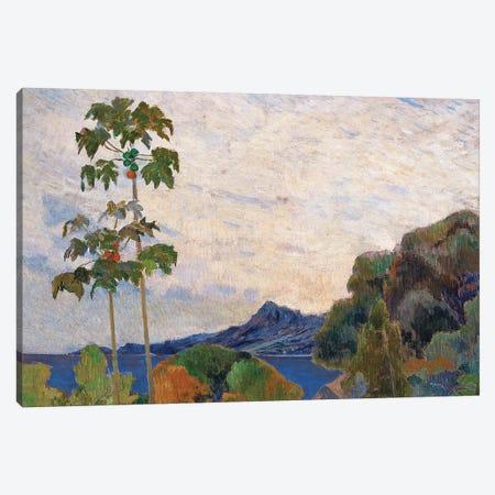 Martinique Landscape, 1887   Canvas Print #BMN3984} by Paul Gauguin Canvas Print