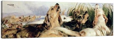 Otter Hounds Canvas Art Print