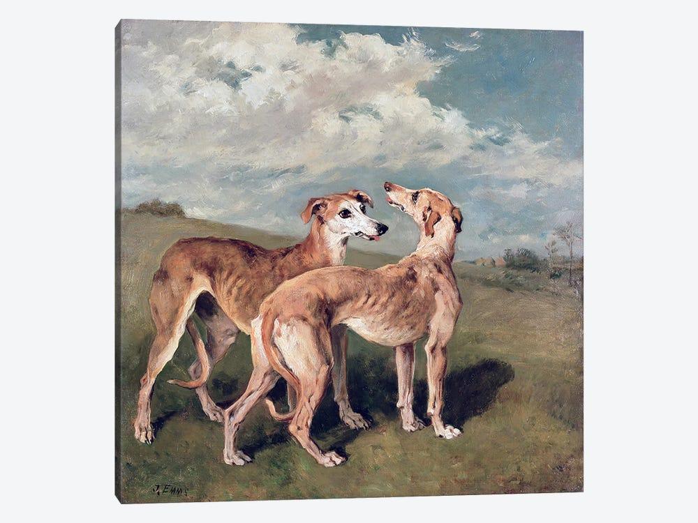 Greyhounds  by John Emms 1-piece Canvas Print