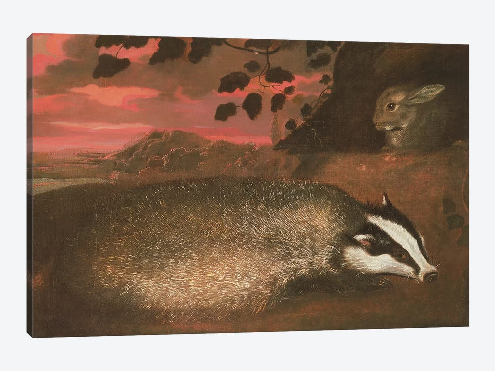 Badger, 17th century by Francis Barlow 1-piece Canvas Art Print