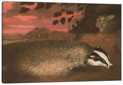 Badger, 17th century Canvas Art Print