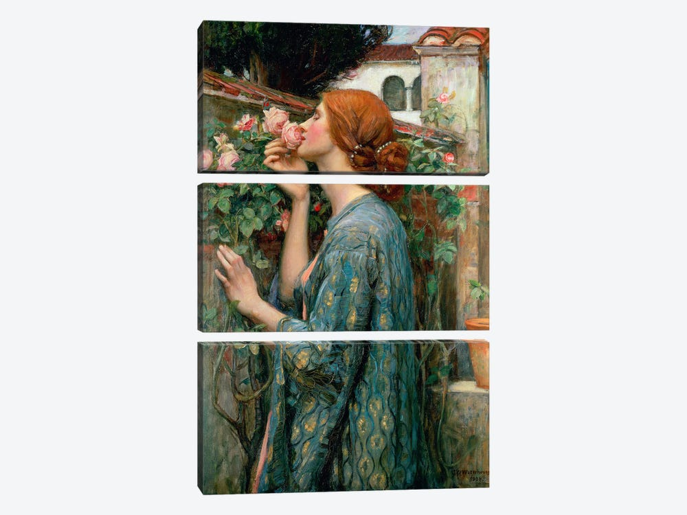The Soul Of The Rose, 1908  by John William Waterhouse 3-piece Canvas Print