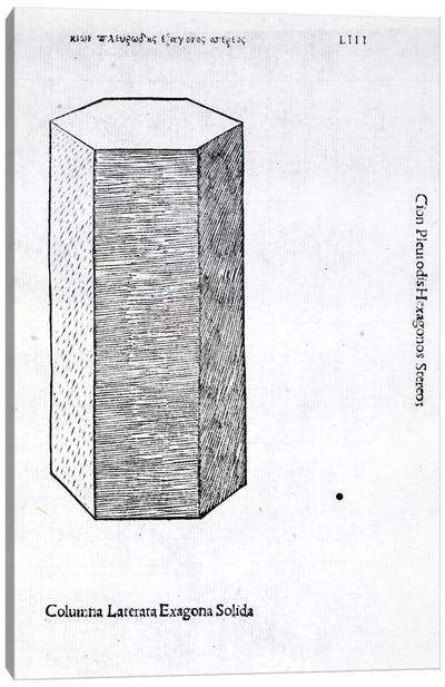 Columna Laterata Exagona Solida Canvas Art Print