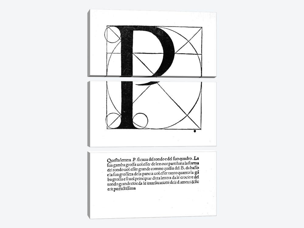 Letter P by Leonardo da Vinci 3-piece Art Print