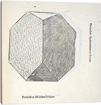 Tetraedron Abscisum Solidum Canvas Art Print