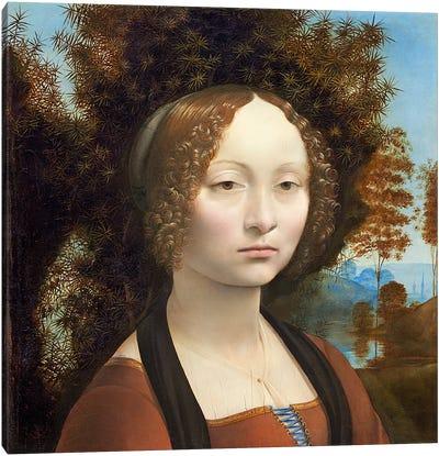 Ginevra de' Benci, c. 1474- 78  Canvas Print #BMN4247