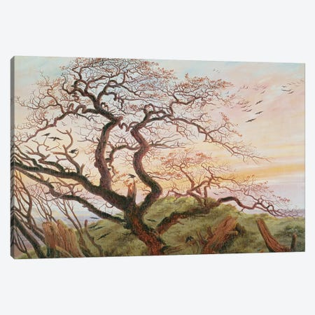 The Tree of Crows, 1822  Canvas Print #BMN431} by Caspar David Friedrich Canvas Print