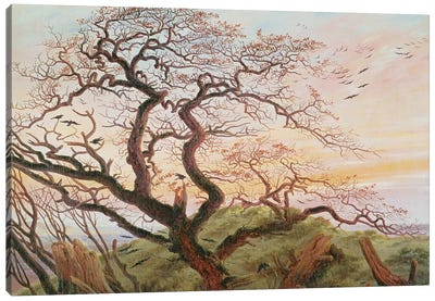 The Tree of Crows, 1822  Canvas Art Print