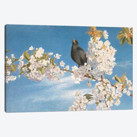 A Voice of Joy and Gladness  Canvas Print #BMN4351} by John Samuel Raven Canvas Art