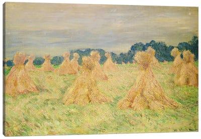 The Small Haystacks, 1887 Canvas Print #BMN4425