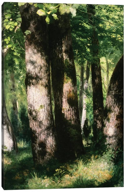 In the Forest of Fontainebleau Canvas Art Print