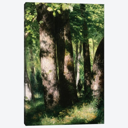 In the Forest of Fontainebleau Canvas Print #BMN4430} by Pierre-Auguste Renoir Art Print