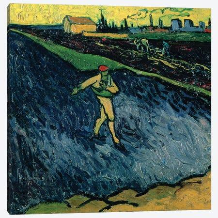 The Sower, 1888  Canvas Print #BMN4436} by Vincent van Gogh Canvas Art