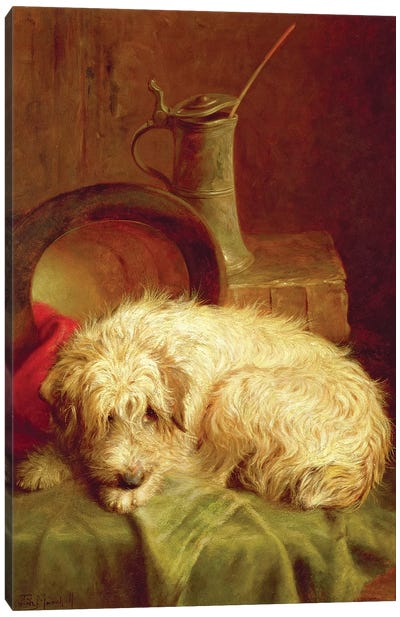 A Terrier Canvas Art Print