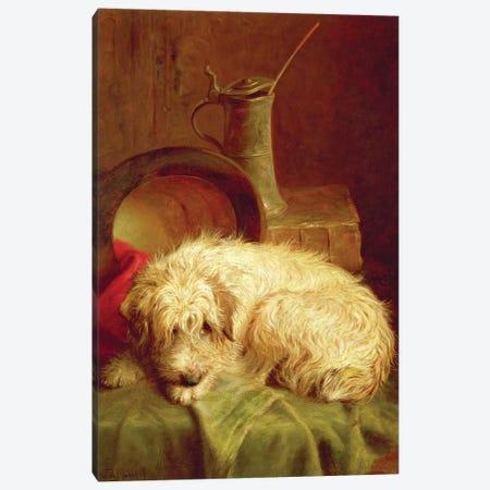A Terrier Canvas Print #BMN4467} by John Fitz Marshall Art Print