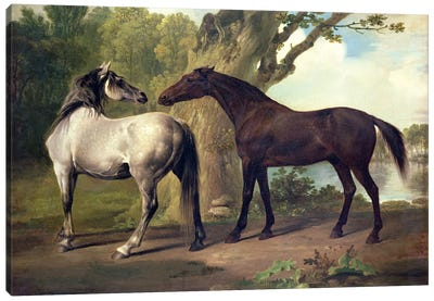Two Horses in a landscape  Canvas Art Print