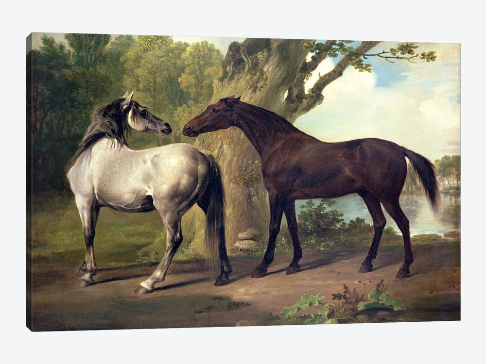 Two Horses in a landscape  by George Stubbs 1-piece Art Print
