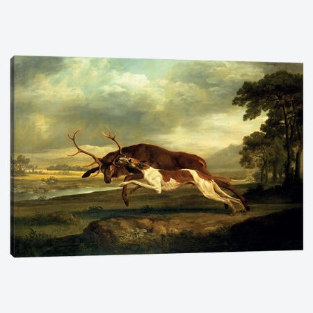 A Hound attacking a stag Canvas Print #BMN4487} by George Stubbs Canvas Art Print