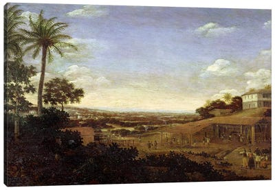Brazilian landscape with sugar mill, armadillo and snake, River Varzea Canvas Art Print