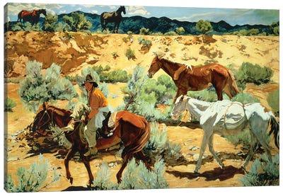 The Southwest  Canvas Art Print