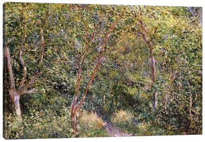 In the Wood Canvas Art Print
