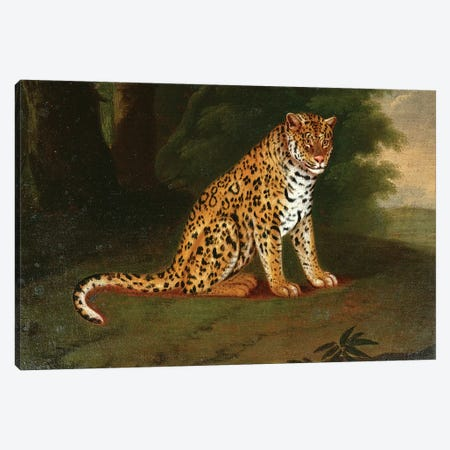 A Leopard in a landscape Canvas Print #BMN4550} by Jacques-Laurent Agasse Canvas Artwork