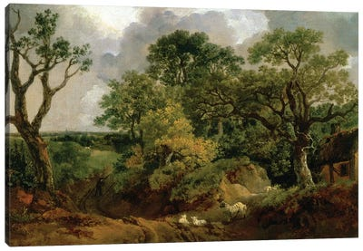 Wooded Landscape Canvas Art Print