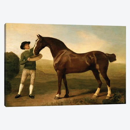 Groom feeding a bay hunter in a landscape Canvas Print #BMN4585} by George Stubbs Canvas Artwork