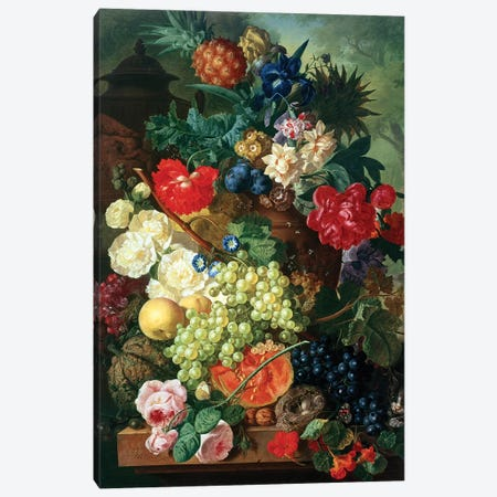 Mixed Flowers and Pineapples in an Urn with a Bird's Nest and a Cat Canvas Print #BMN4593} by Jan van Os Canvas Art