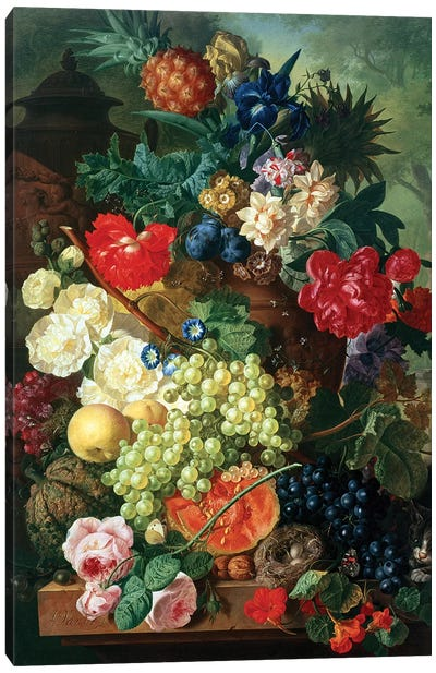 Mixed Flowers and Pineapples in an Urn with a Bird's Nest and a Cat Canvas Art Print