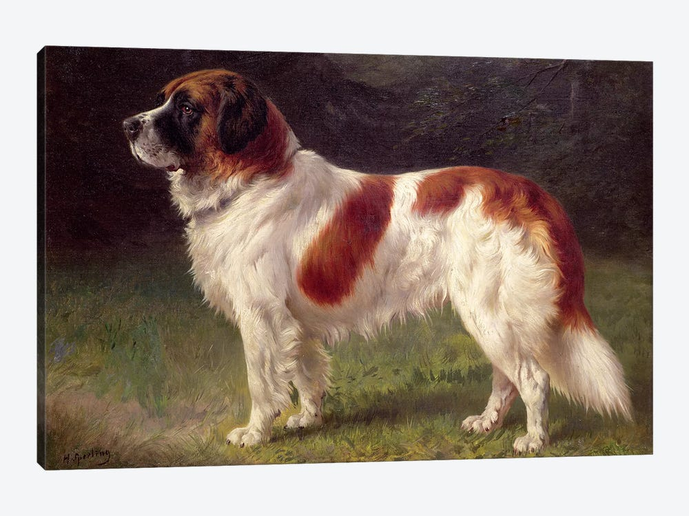 St. Bernard by Heinrich Sperling 1-piece Canvas Print