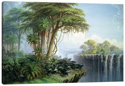 Buffalos Driven to the Edge of the Chasm opposite Garden Island, Victoria Falls Canvas Art Print
