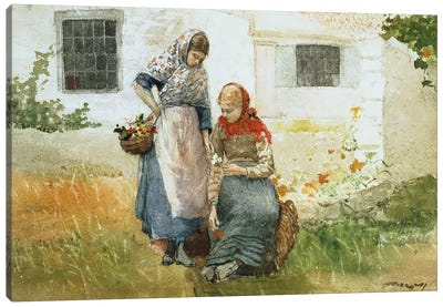 Picking Flowers, 1881  Canvas Art Print
