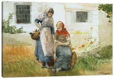 Picking Flowers, 1881  Canvas Art Print