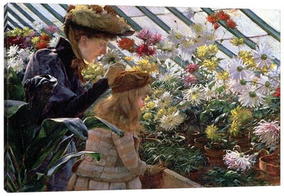 Chrysanthemums, 1890  Canvas Art Print