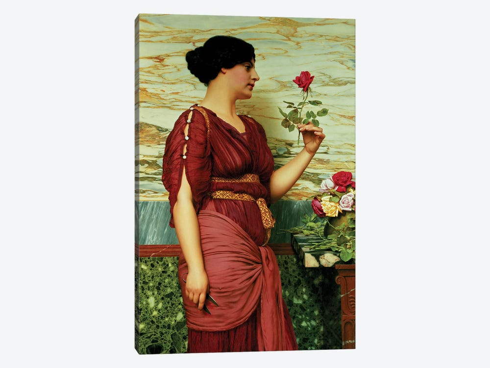 A red, red rose by John William Godward 1-piece Canvas Wall Art
